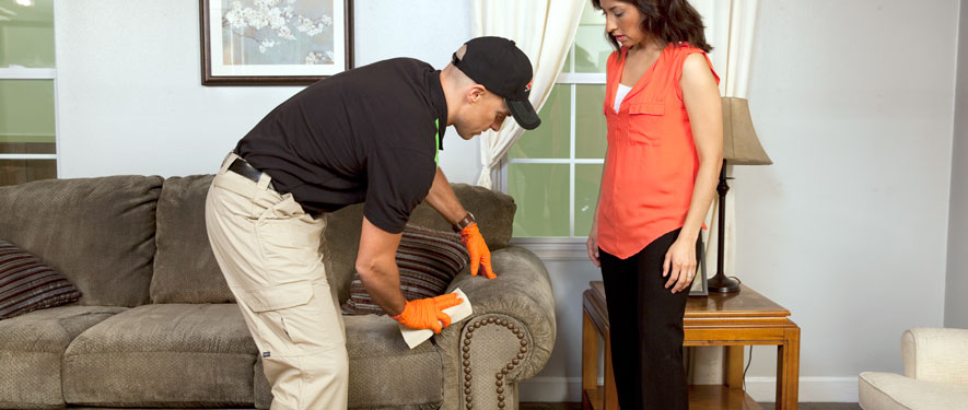 Hazelhurst, MS carpet upholstery cleaning