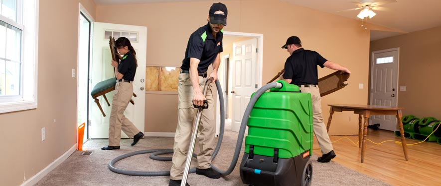 Hazelhurst, MS cleaning services